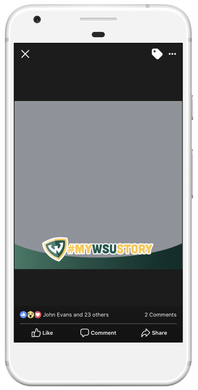 Screenshot of Facebook frame with #MyWSUStory text height=
