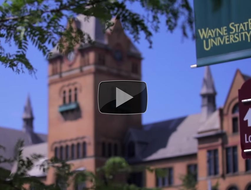 Why Wayne State? The City